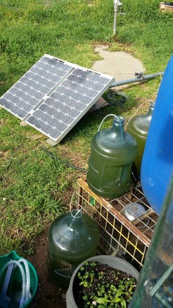 bioreactor diy solar