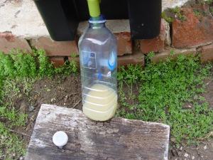 The Bokashi liquid