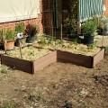 raised beds front garden2015