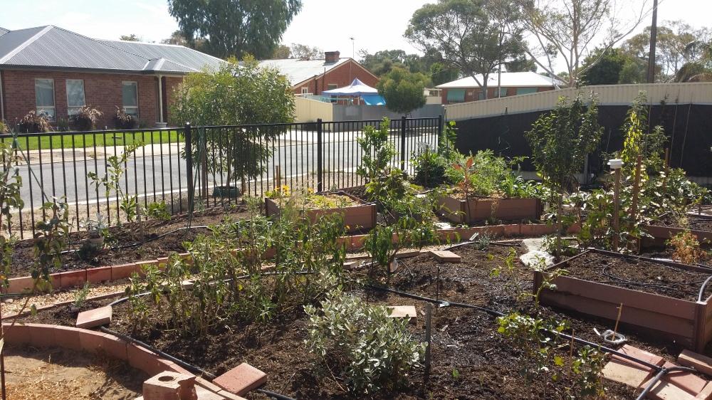 A garden designed to save energy