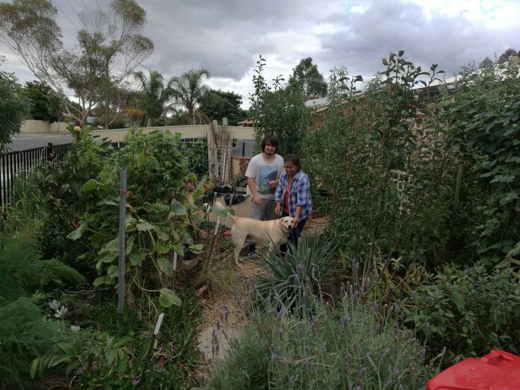 Marlon Jelina Athena garden