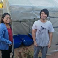 Our aquaponics story