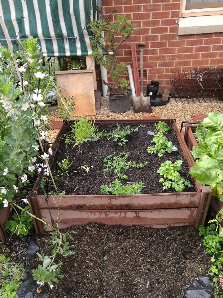Kitchen vegetables near the front door.