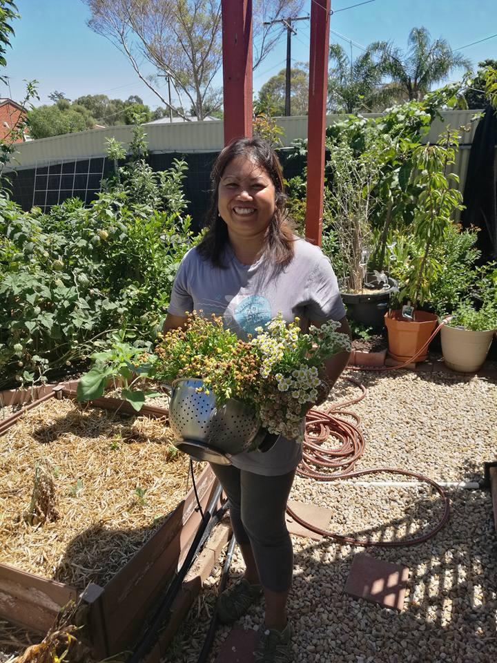 Jelina flower harvest