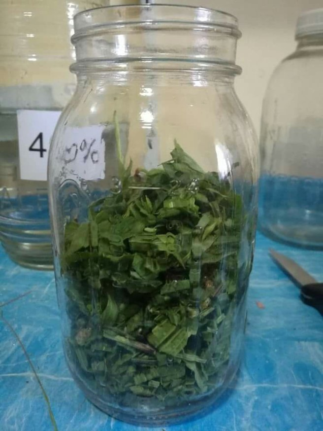 3/4 fill your jar with herbs