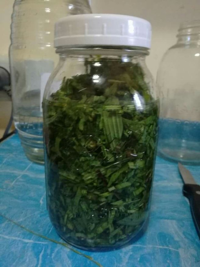 Fill with alcohol until the herbs are covered