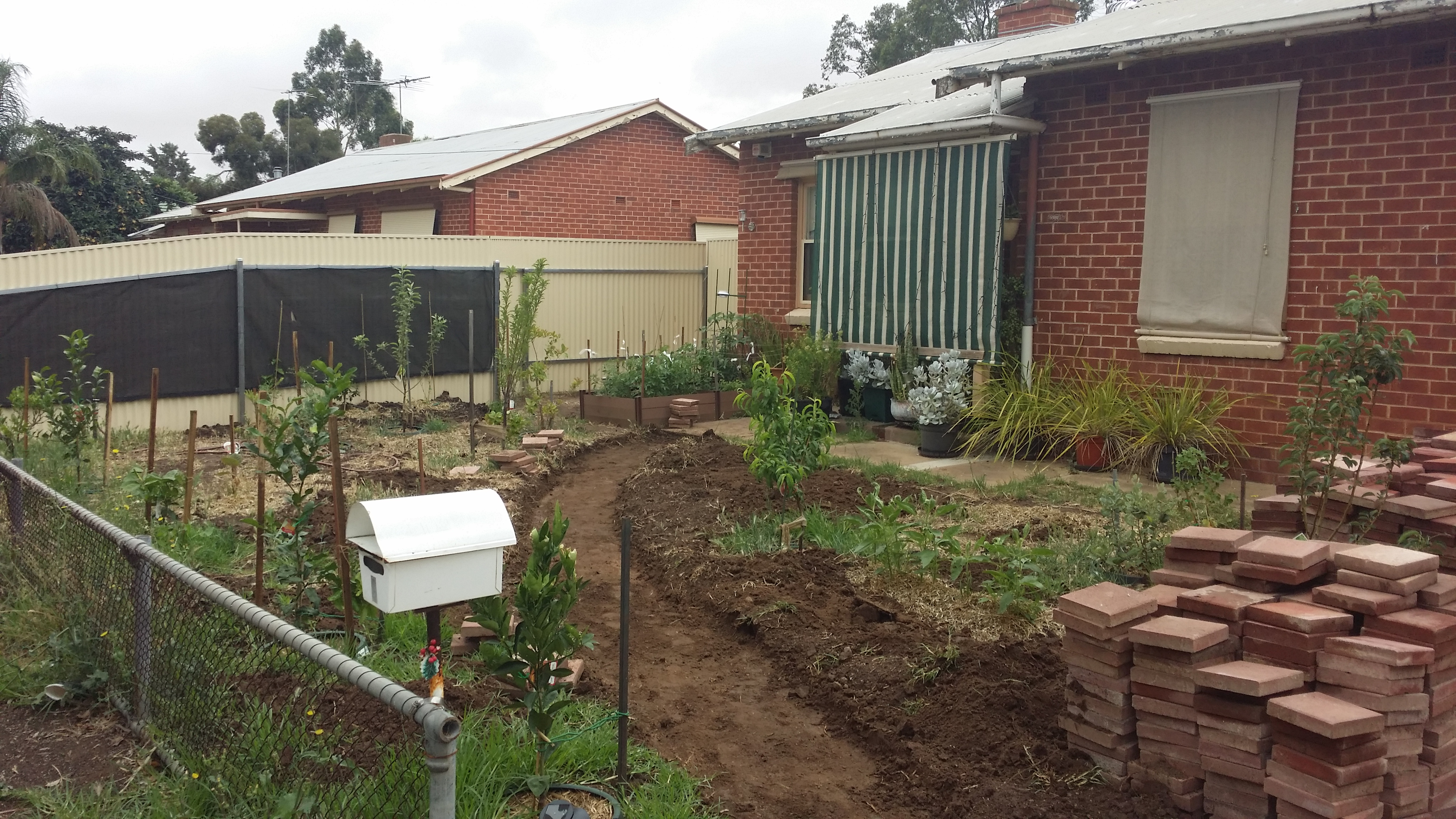 The front garden at the tail end of 2015.