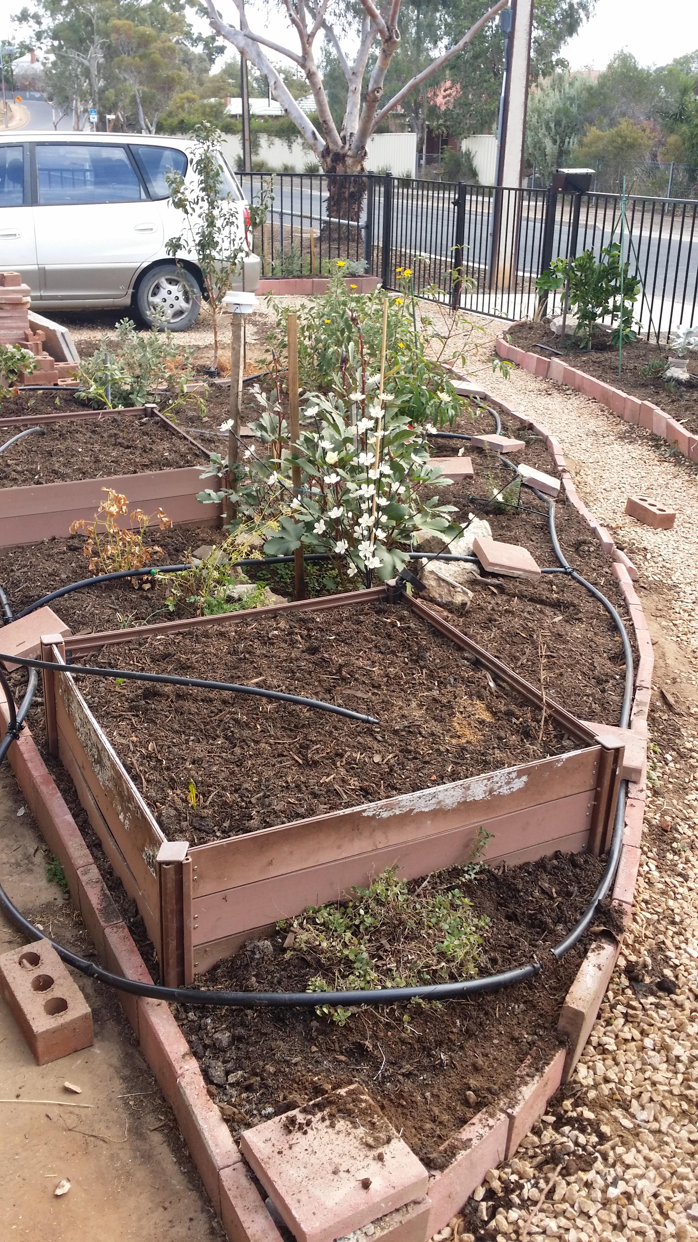 Mulch added and irrigation underway.