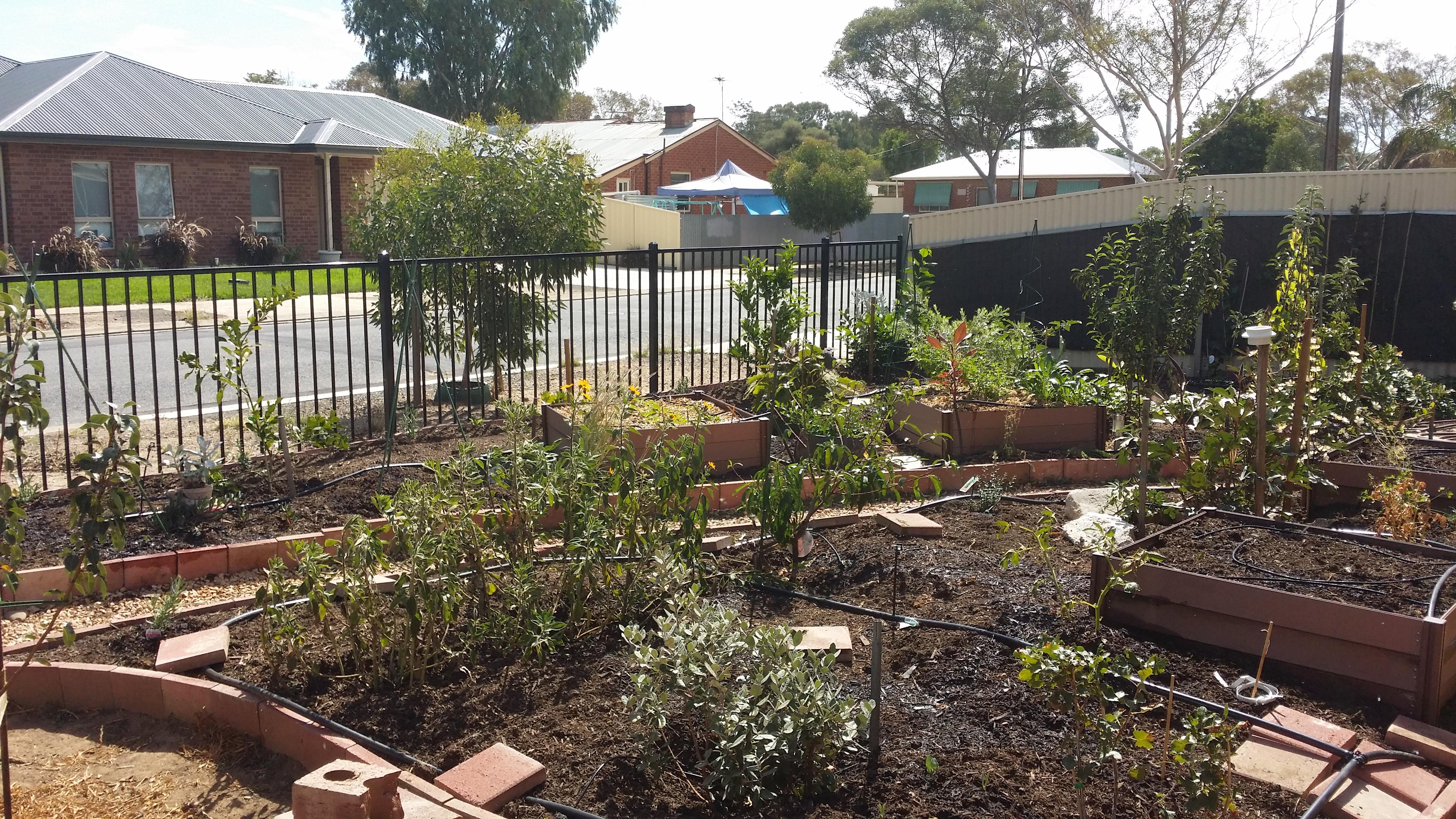 Now it's looking like a garden!