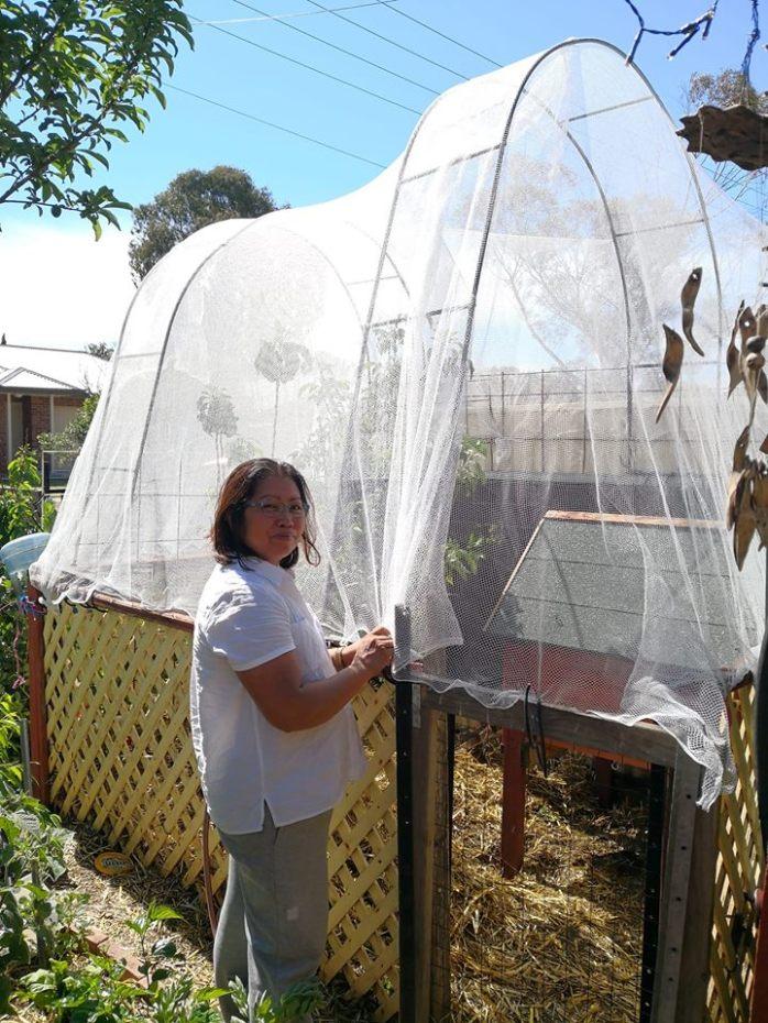 Jelina bird netting