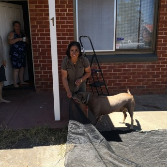 Jelina Haines Ash next door cooling shade
