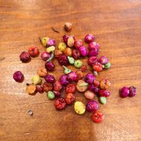 Who ever said that Ruby Saltbush berries only come in red?