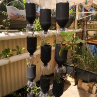 The vertical gardening workshop is sold out