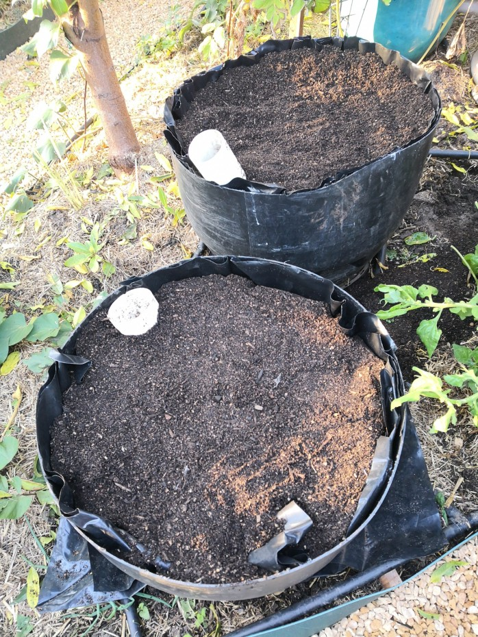 Wicking beds from plastic drums