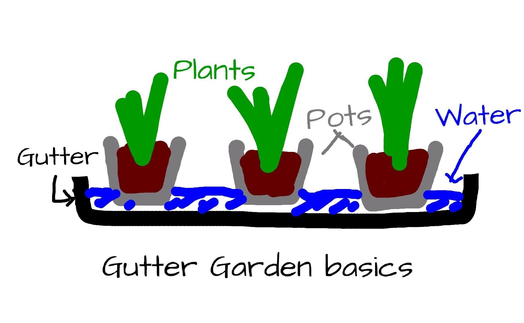 Essentials of a gutter garden