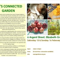 Joe's Connected Garden Open Day