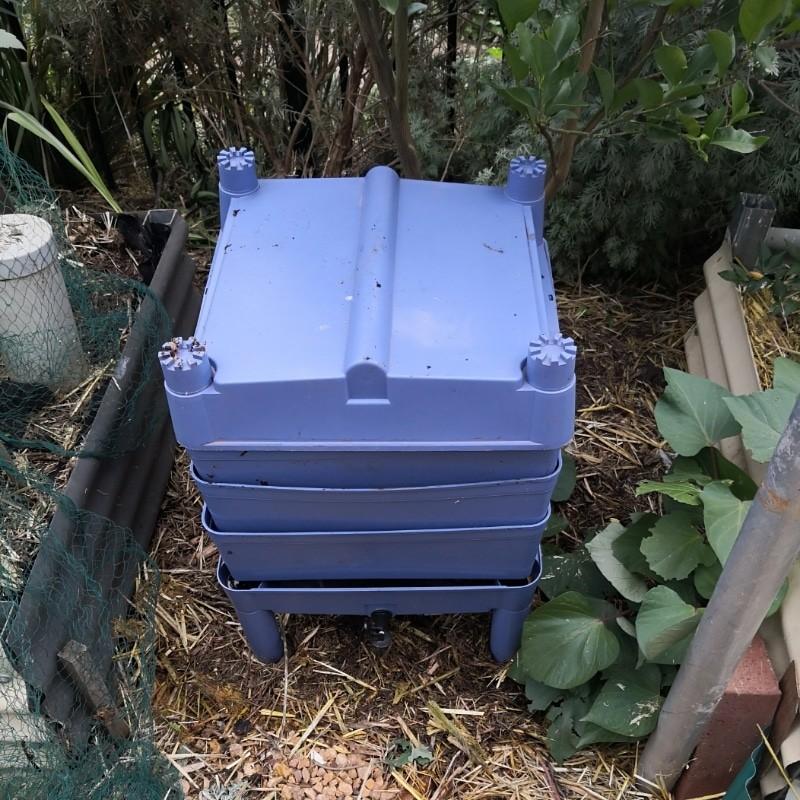 Bluestone blue looks nice in the garden