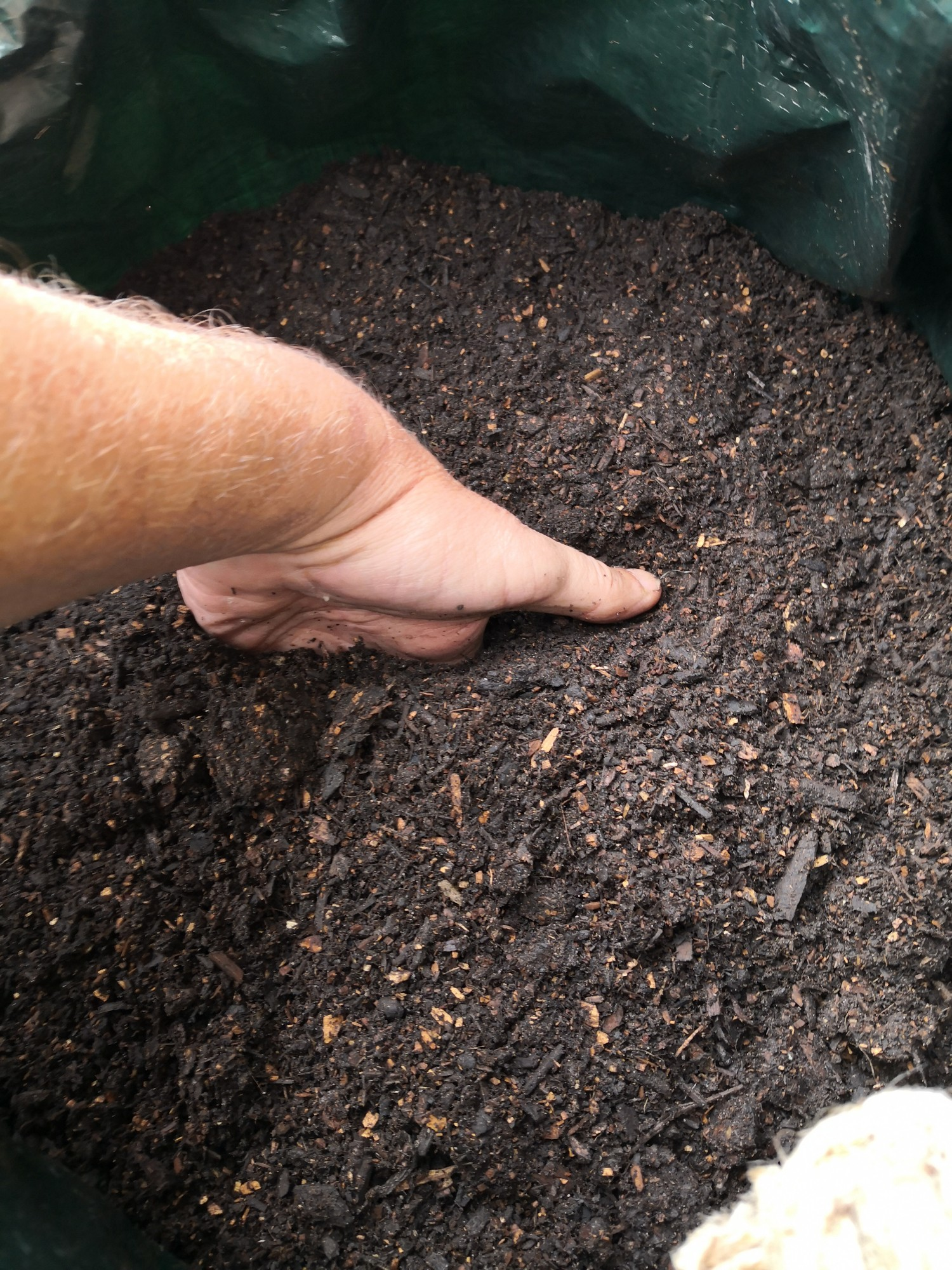 Put 10 cm of compost into the bottom of the bag.