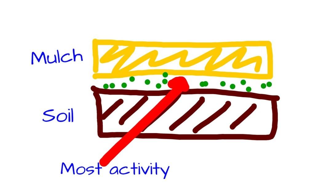 Mulch layers