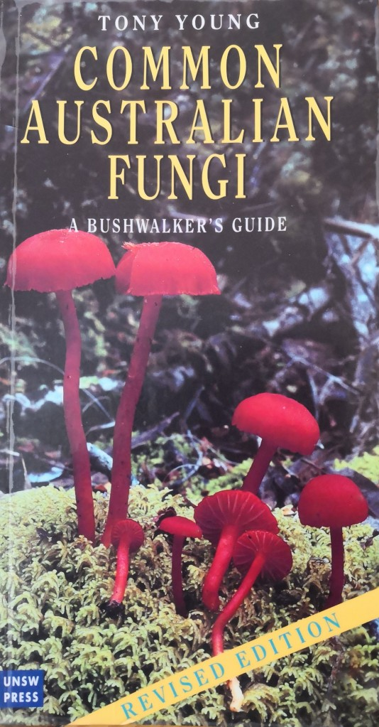 'Common Australian Fungi A bushwalker's guide' by Tony Young