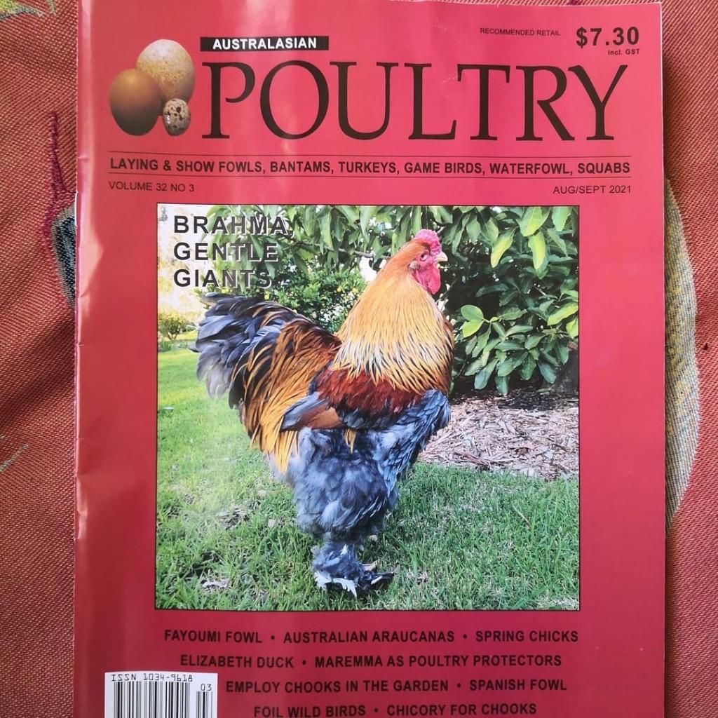Vol 42 number 3 Australasian Poultry